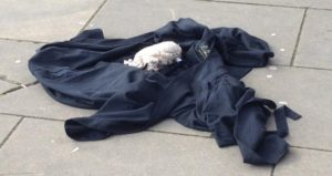 DISCARDED ROBE